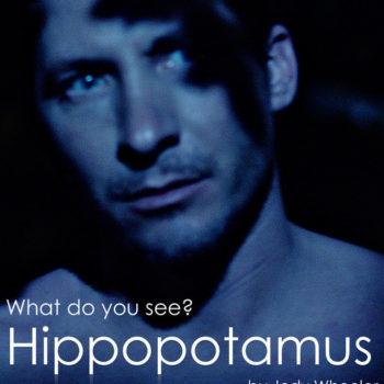 Hippopotamus-poster