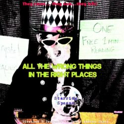 ALL THE WRONG THINGS IN THE RIGHT PLACES-poster